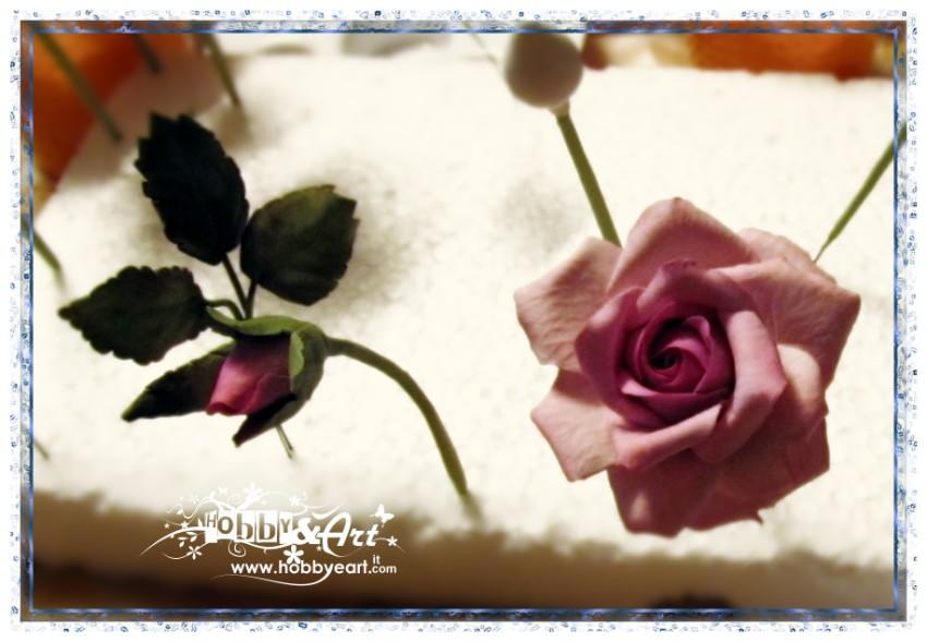 Stai visualizzando le foto inerenti l'articolo: Claudia Merli - Porcellana Fredda, Rose...