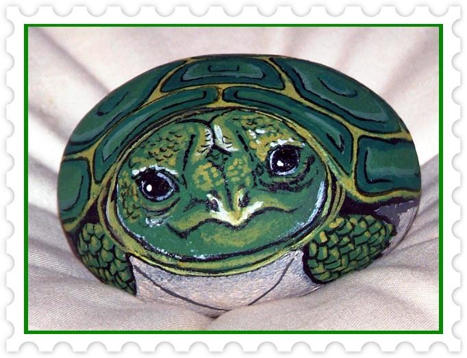 Hobby art paola capponi for Sassi per tartarughe